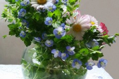 flori-albastre-in-vaza-m.pt-lcf