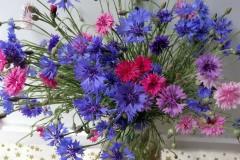 flori-albastrele-mama