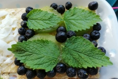 aronia-mint-kiwi-honey-butter-wafersheets