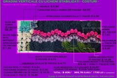 004.-costuri-licheni-r